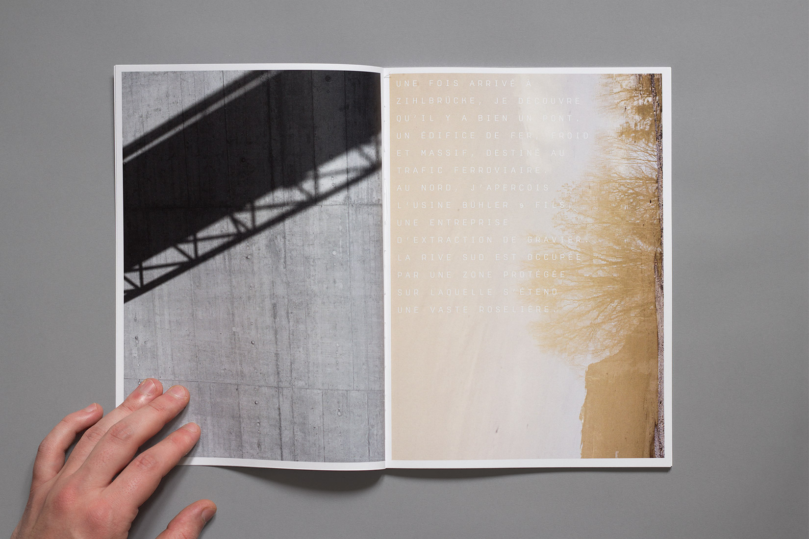Zihlbrücke, diploma, book, graphic design, shadow, reflection, branchs, trees