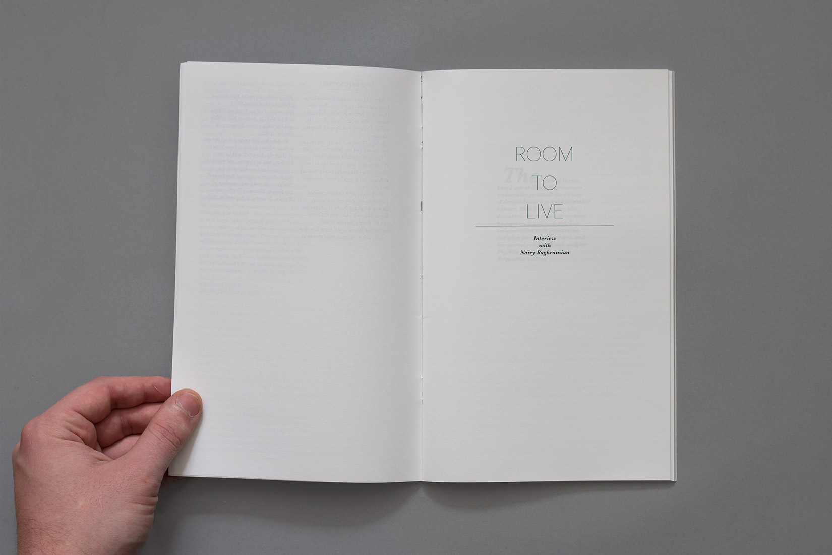 Livre d'artiste, Nairy Baghramian, Room to live
