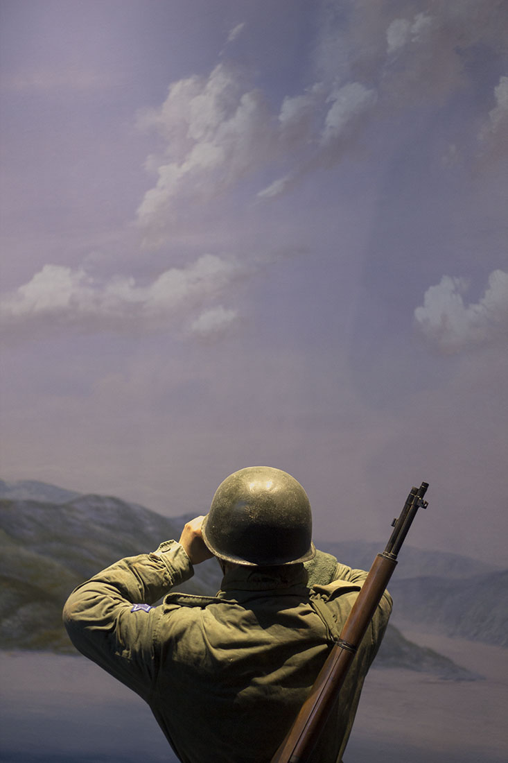 Soldier with binoculars, painted landscape, South Korean military, army, uniform