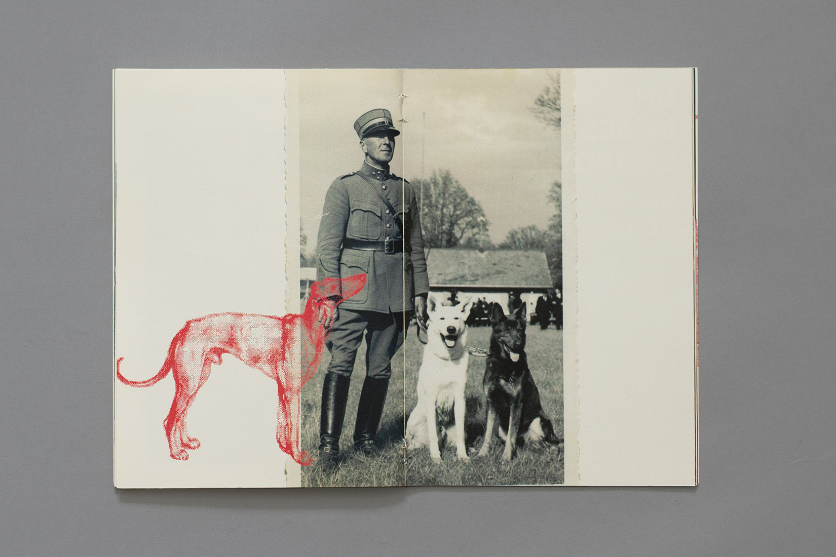 Manual for the perfect little soldier, Soldier and his dogs, postcard