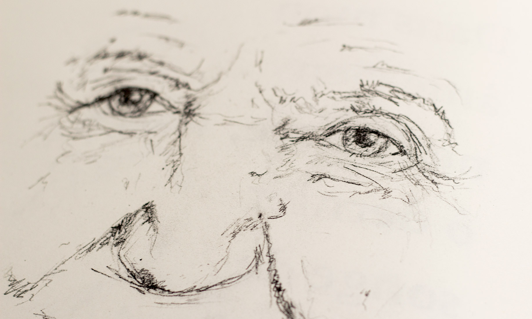 Book, elderly person, pencil drawing, illustration, face, expression, detail, look, eyes
